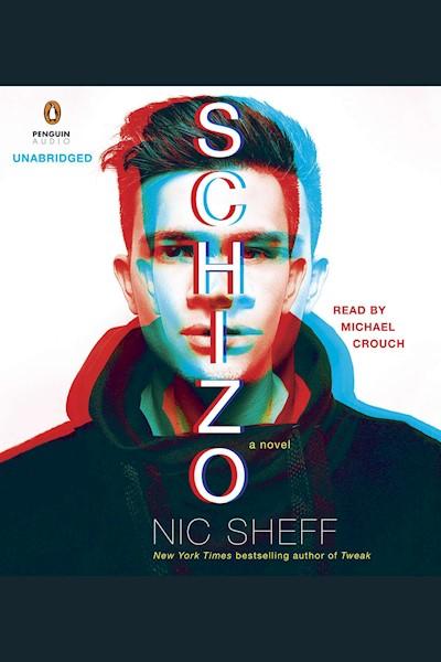 Schizo: A Novel