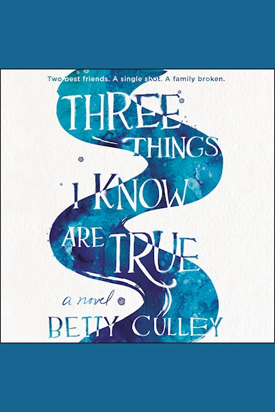 Three Things I Know Are True: A Novel